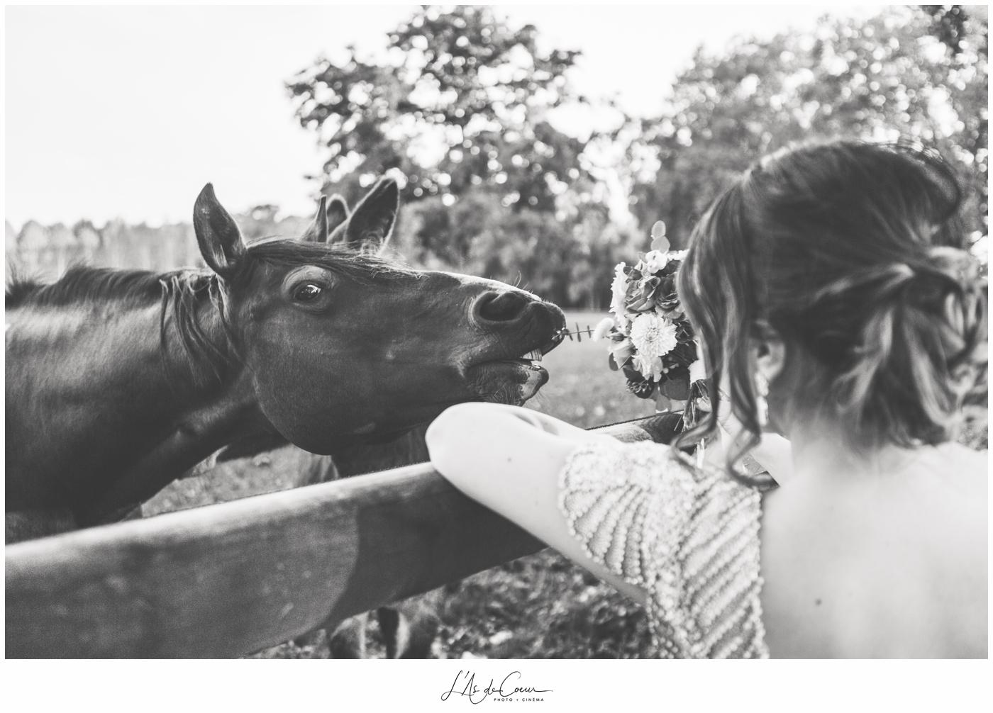 mariage Château de Varennes photos cheval
